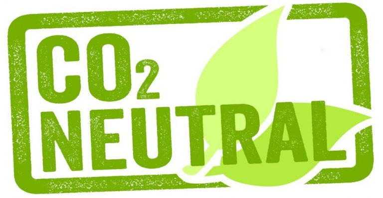 Co2 Neutral Logo Server Damisoft grün 2019 signet label neutrale energie strom