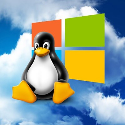 Linux Tux Windows Cover Logo Damisoft Icon x86 Webbrowser Emulator