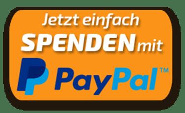 PayPal Spenden Logo Damisoft